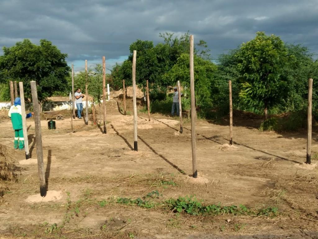 Assunção: Agricultura familiar recebe incentivo através da implantação de viveiro de mudas
