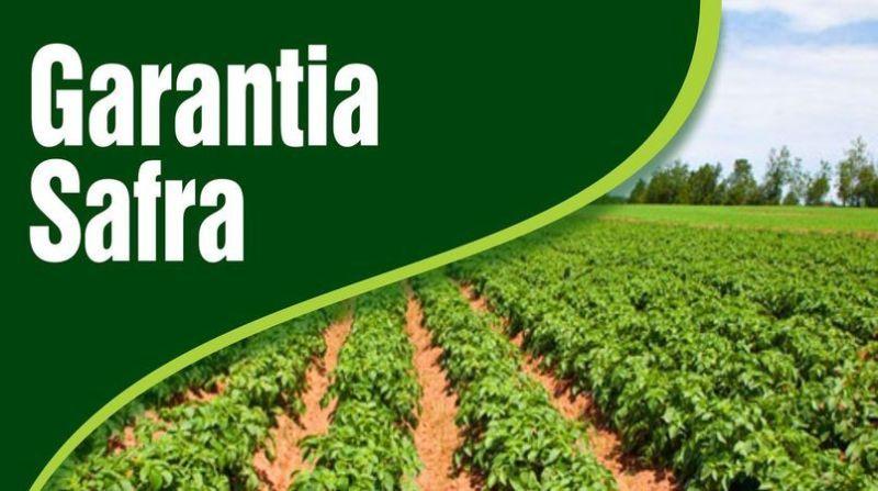 Ministério da Agricultura autoriza pagamento do Garantia-Safra para Assunção e outras cidades