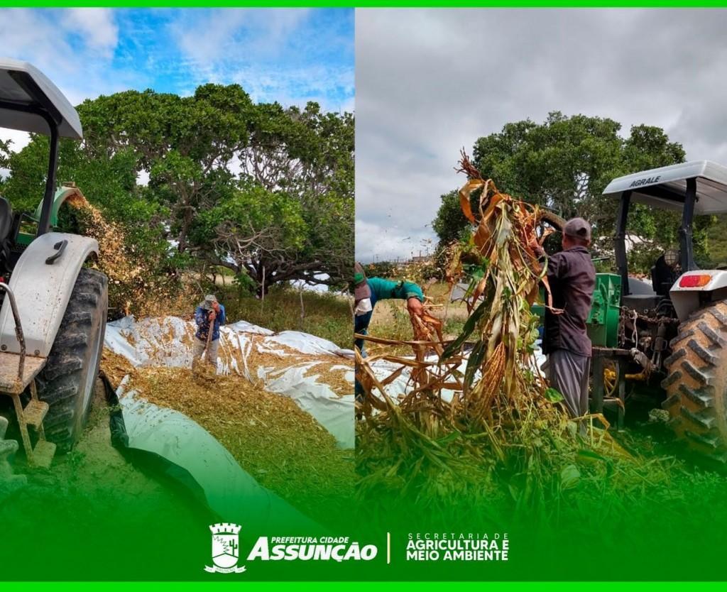 A Prefeitura Municipal de Assunção está disponibilizando para o homem do campo